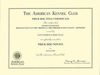Bristol's Trick Dog Novice Certificate