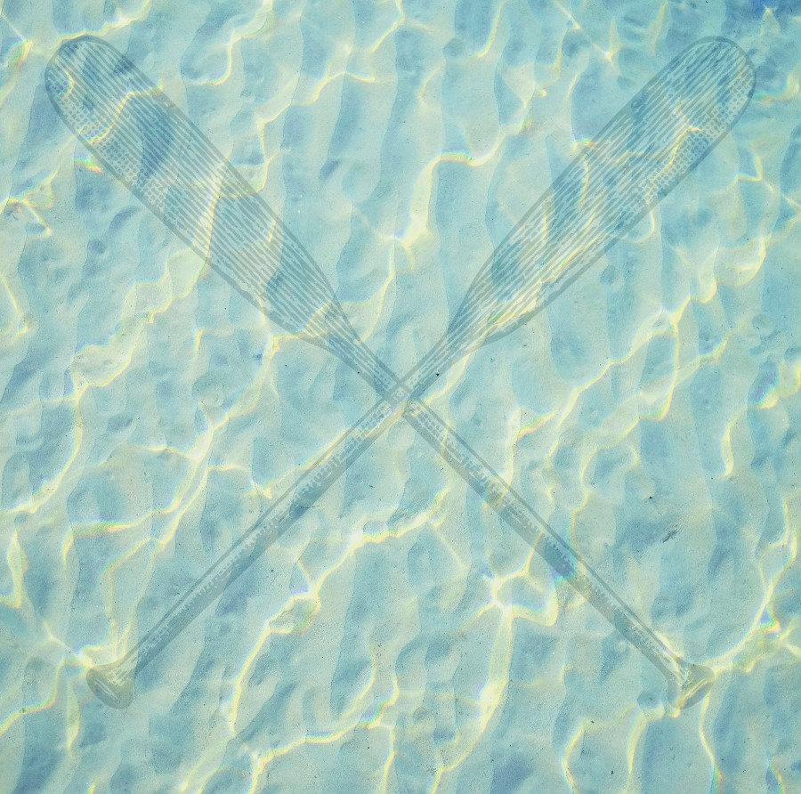 239-2392097_transparent-oar-png-damselfl