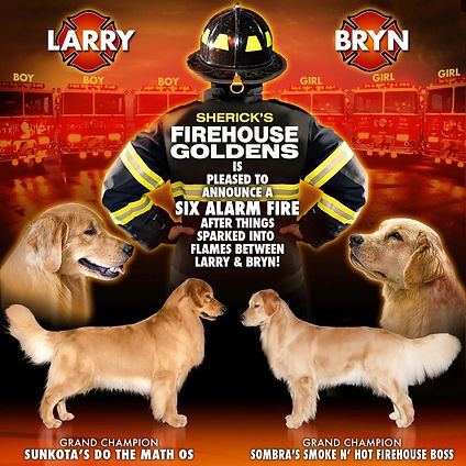 Announcement Six Alarm Fire Larry x Bryn