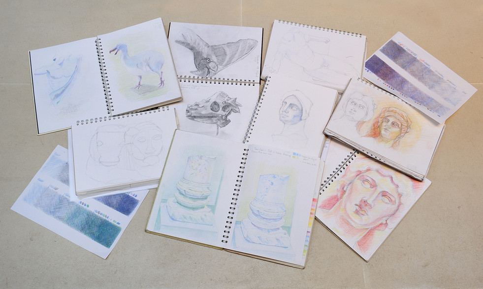 Students' sketchbooks from University Museum