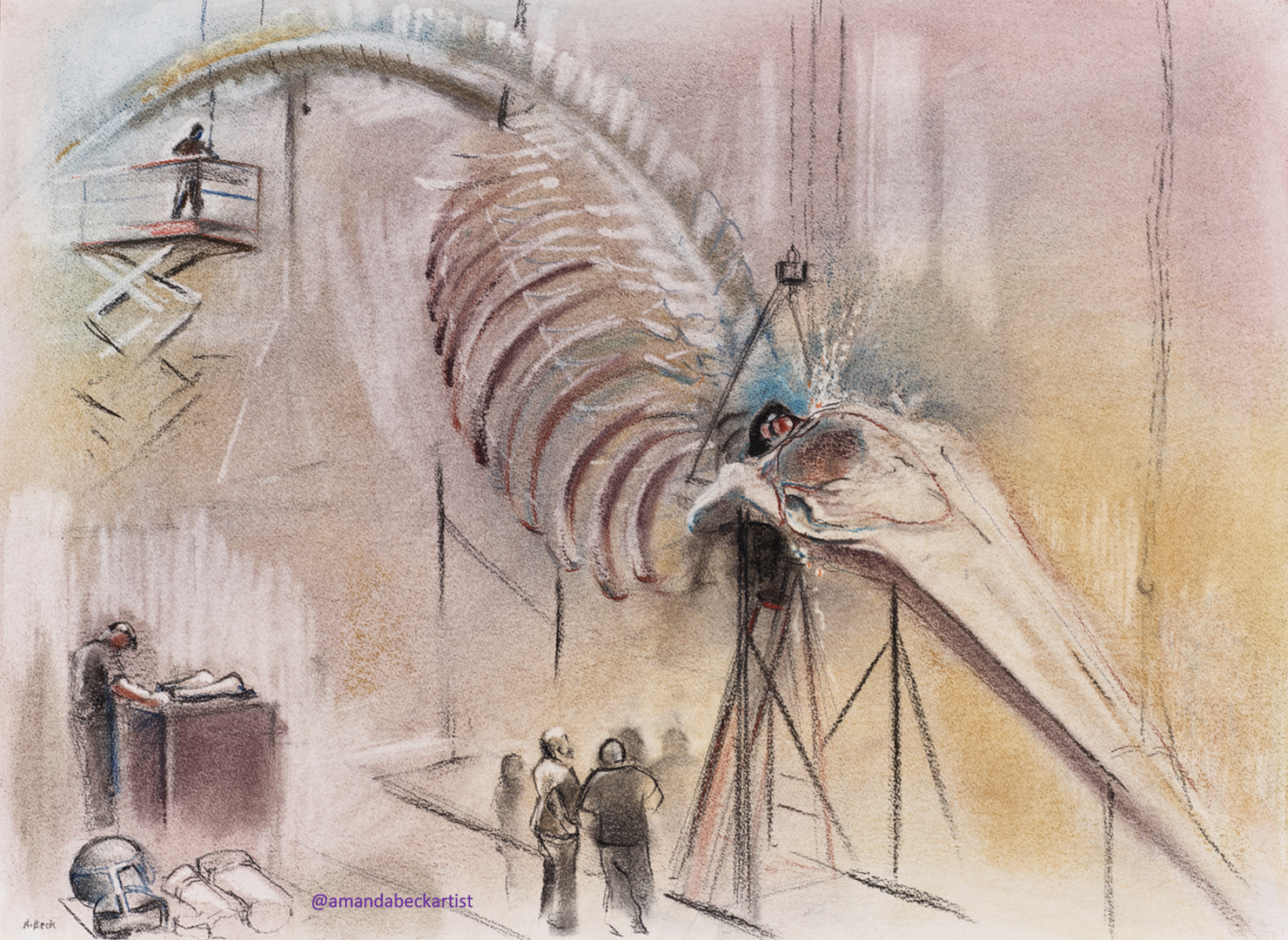 Testing! Hanging the Blue Whale Skeleton
