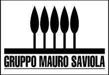 Gruppo_Mauro_Saviola.jpg