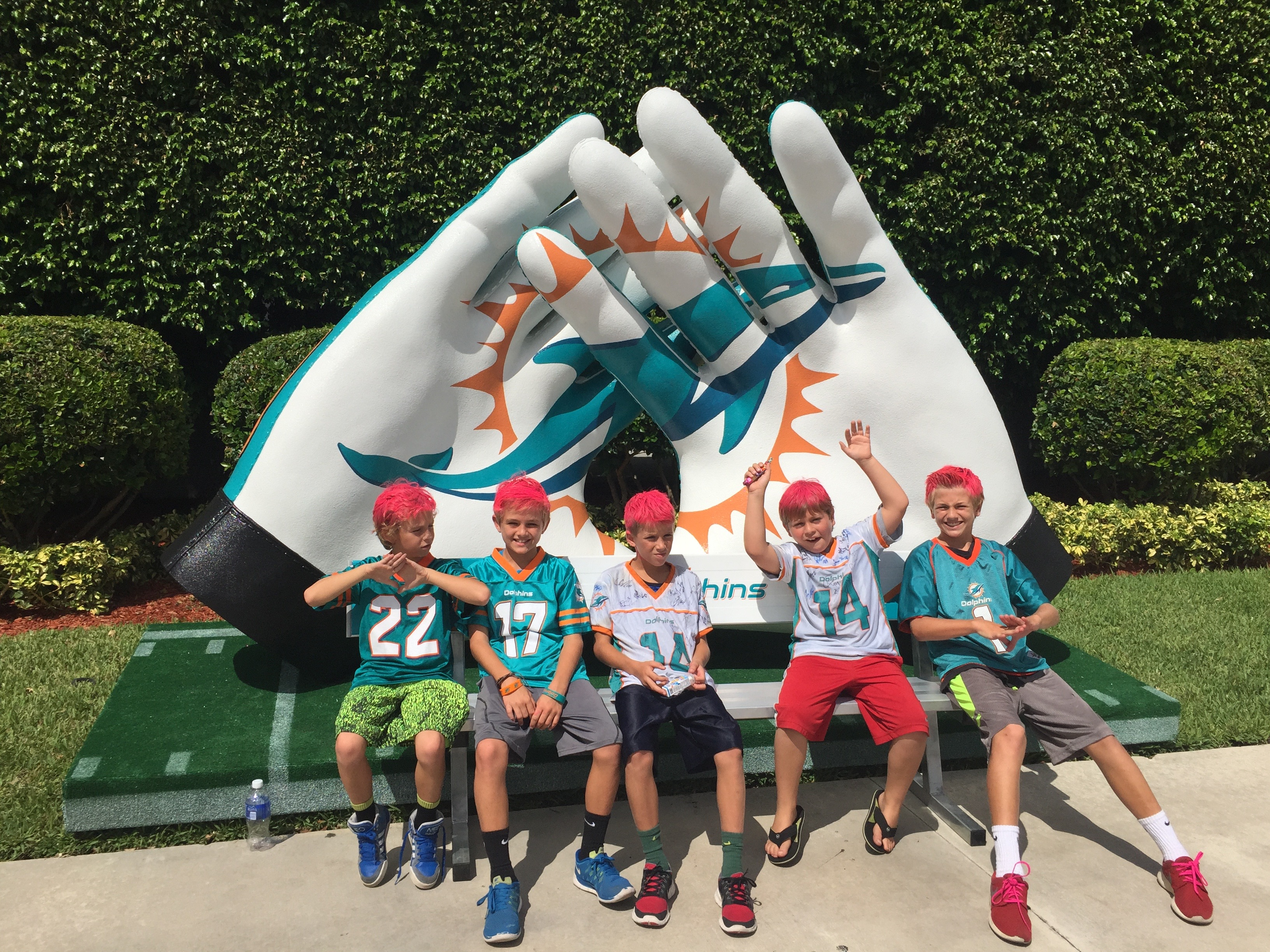 Miami Dolphins Photo op Giant Gloves