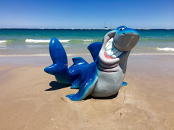Character Shark Fish