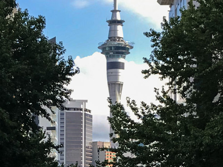 Auckland Region - not just the city!