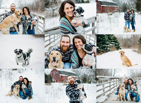 Winter Family Session with All the Puppies - Oshkosh Family Photographer