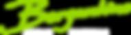 bergantino-logo-green-white-RGB-300x80.p