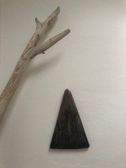 Niomi Fawn Exhibition Wild Home