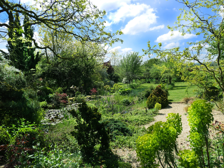 Vue du jardin et du bassin