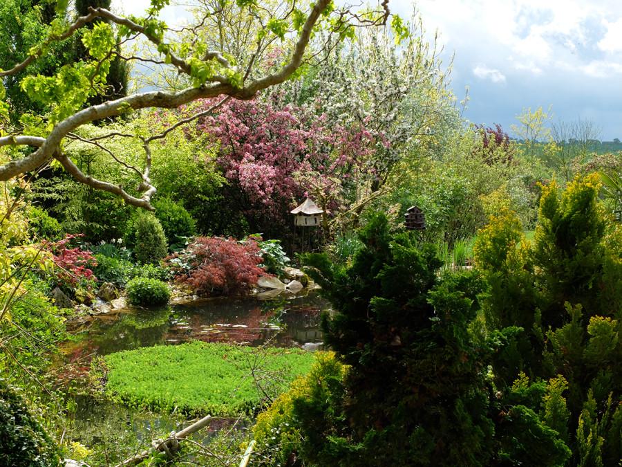 Jardin Marie printemps.jpg