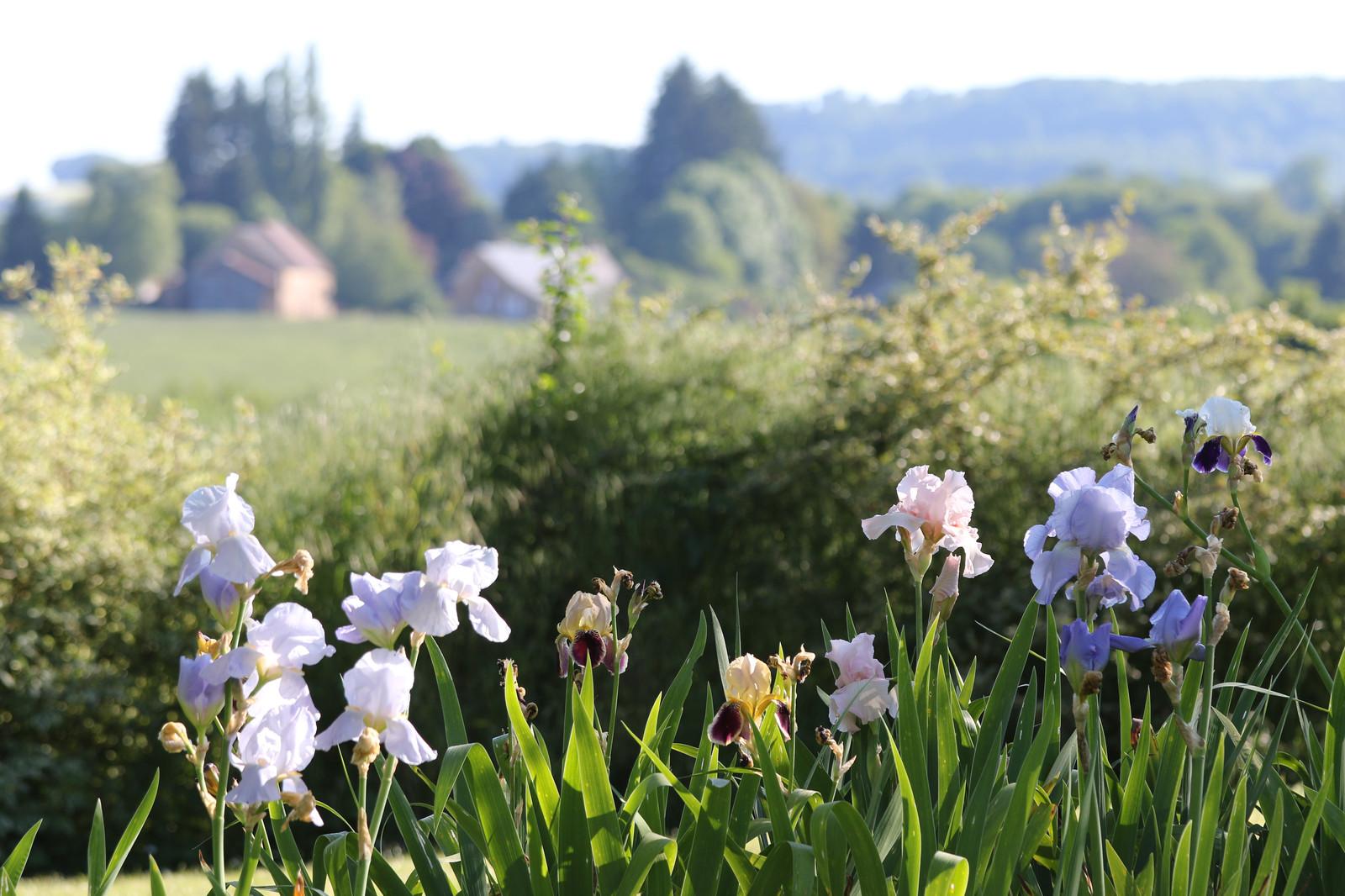 Le Jardin de Marie - Jardin remarquable - Chambres d\'hôte - Sancerre