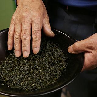 狭山茶スクール