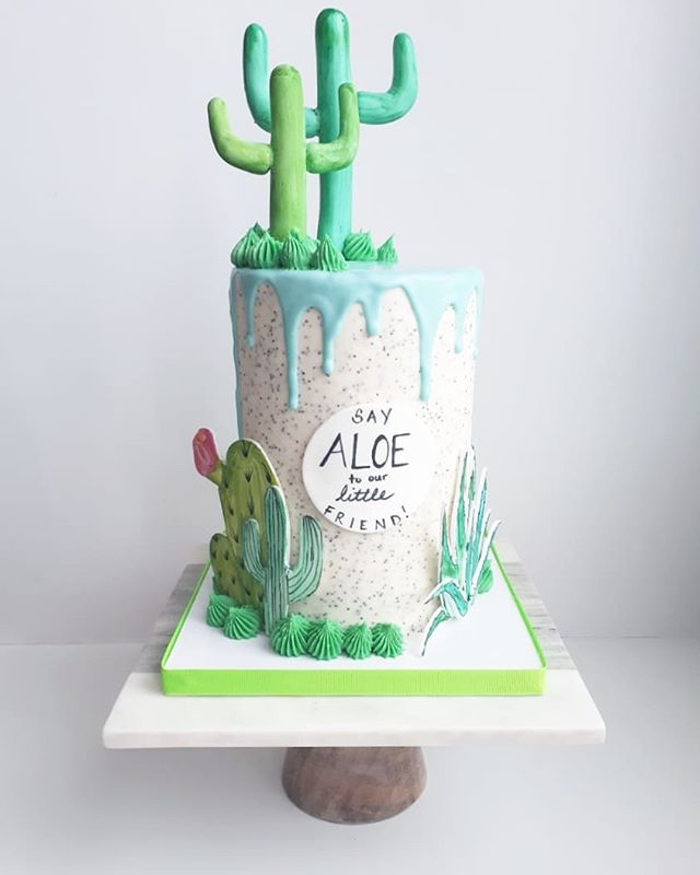 SAY ALOE TO OUR LITTLE FRIEND 🌵 Get it_