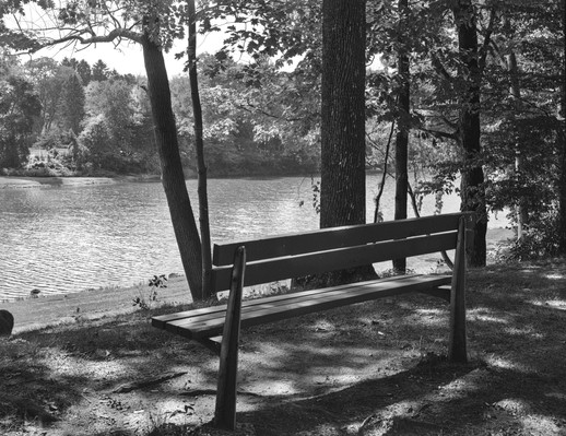 bench and lake.jpg