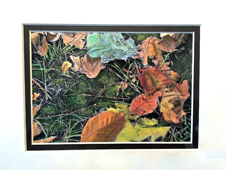 Leaves 5x7