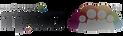 logo-beta_(3).png