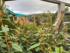 Day Retreats at Murdunna