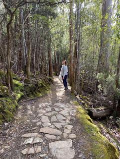 Mindful walking on the Lenah Valley Track, Kunyani, 2020