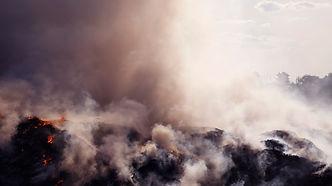 Decaying Sound, Sounding Decay: Jacob Kirkegaard