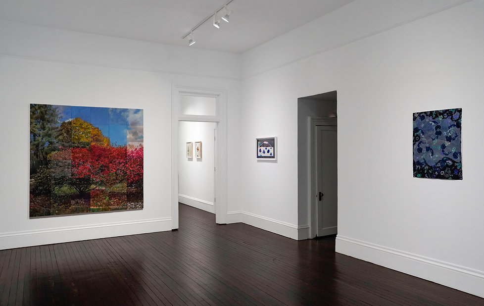 Time Lapse, July 3 - August 16, 2021 courtesy of Fridman Gallery 6.JPG