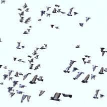 Bird Dance #3 (detail)