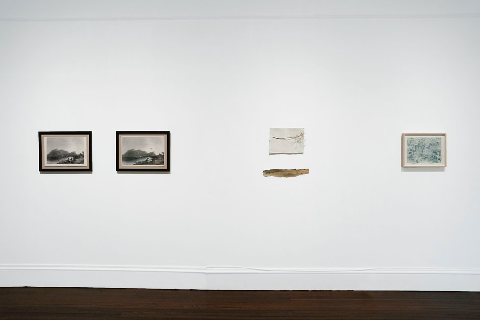 Time Lapse, July 3 - August 16, 2021 courtesy of Fridman Gallery 8.JPG
