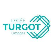 LYCEE TURGOT PARTENAIRE AEL ELECTRICIEN
