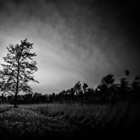 ALMAR SETZ FOTOGRAFIE - KALENBERG - 0.JP