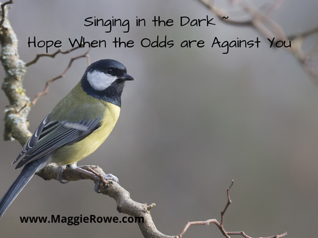 Singing in the Dark: Hope When the Odds are Against You