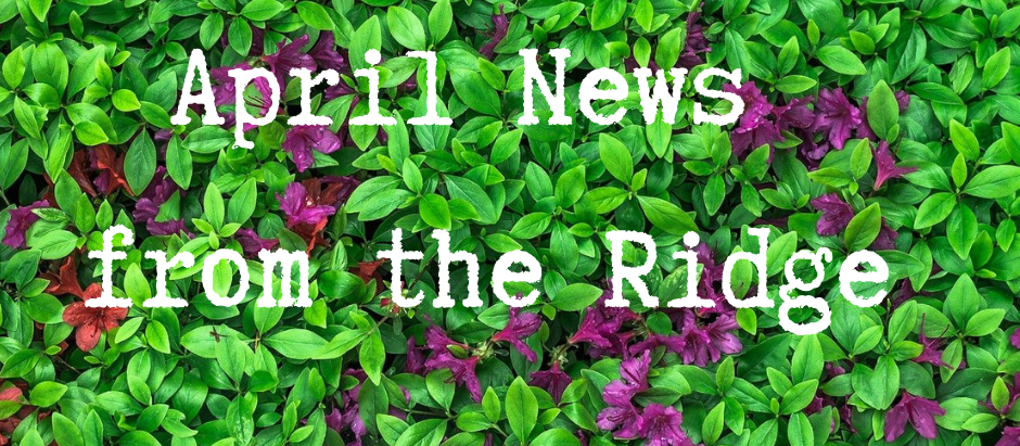 April News from the Ridge!