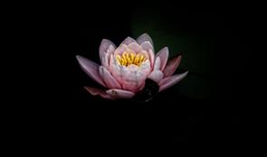 kb-meditation-mindfulness-1.png