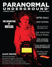 November 2013 Cover .jpg