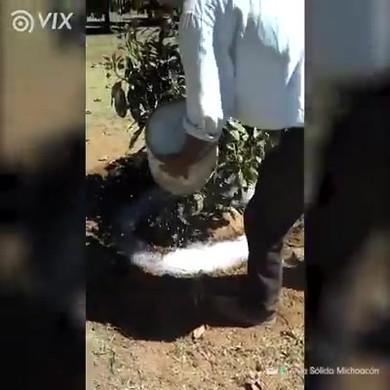 WhatsApp Video 2019-08-14 at 08.40.47.mp