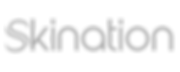 Skination Logo 2.png