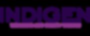 IDG Logo Lounge 2.png