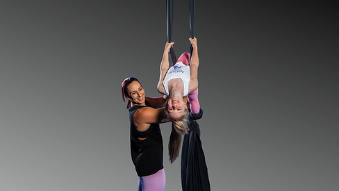 Aerial Artistry is the family I never knew I needed! (5).png