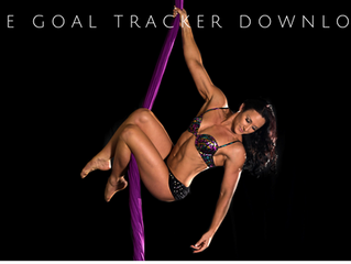 From Amateur to Awesome Aerialist, all over again! [FREE DOWNLOAD] - Fit to Fly; Aerial Goal Tracker