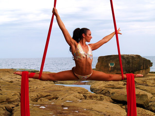 So You Want to be a Professional Aerialist...