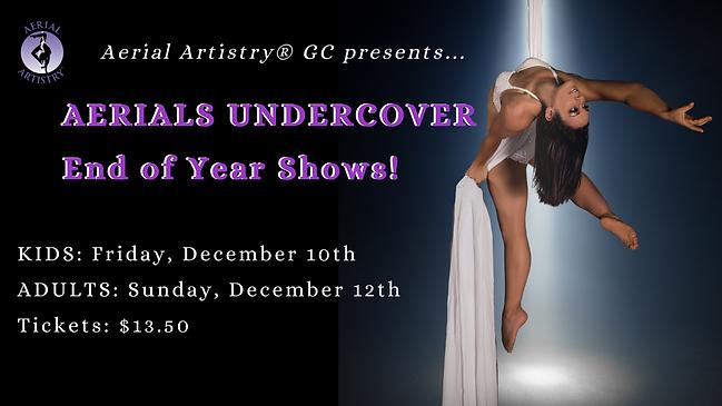 Aerial Artistry showcase performance