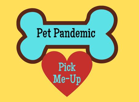 30 Minute Pet Massage for $10 Donation!