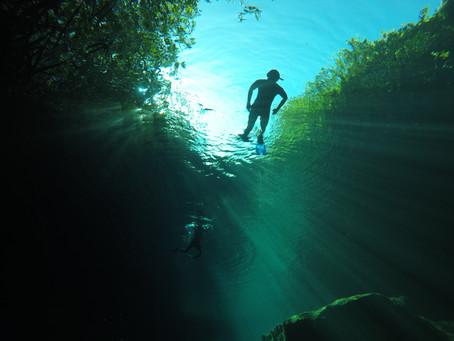 Casa Cenote - Tulum Snorkeling