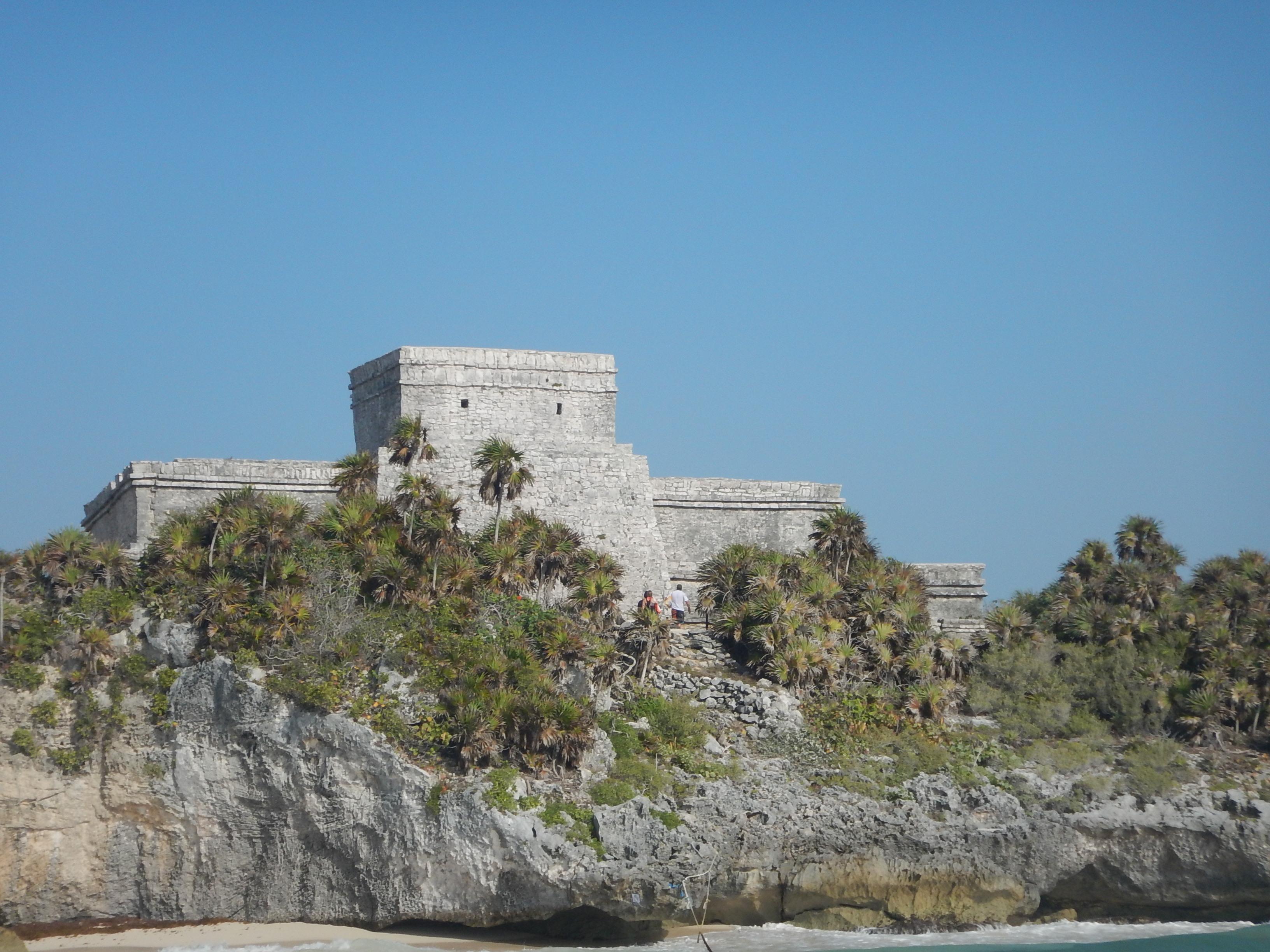 Snorkel Cenote & Tortugas223