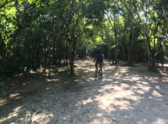 Coba Punta Laguna Oct 2018 - 45.JPG