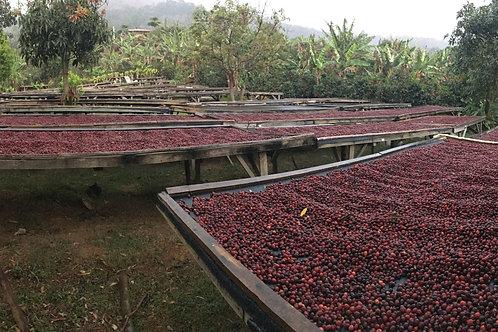 Colombia - Huila Micro Lot  5lb