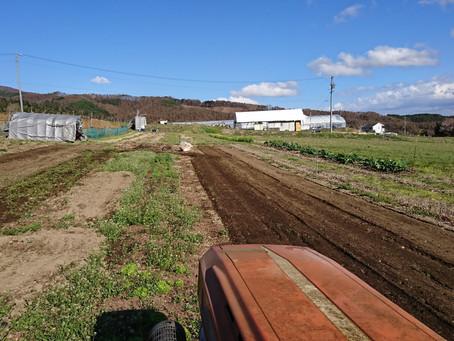 トラクターで畑をおこします。