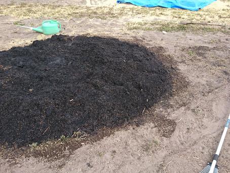 籾殻くん炭作り2回目