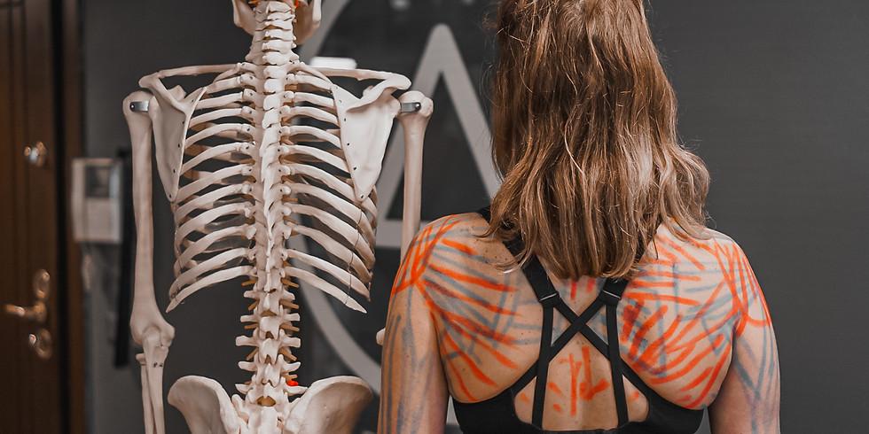 Serhan Bulut ile 100 Saat İleri Yoga Anatomi