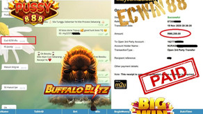 Buffalo-Blitz RM6200