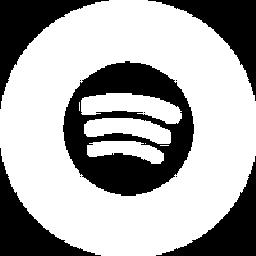 Lutz Koppetsch on Spotify