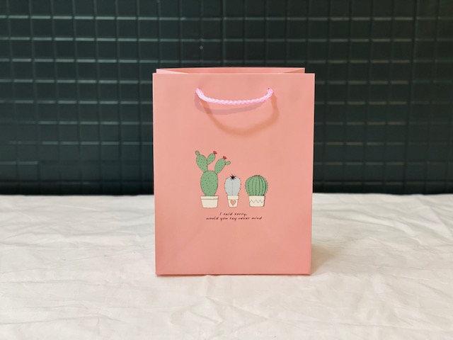 Bolsa regalo Cactus